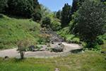 名勝 常徳寺 庭園