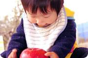 岡崎りんご園